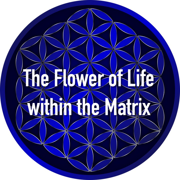 flower-of-life-tree-of-life